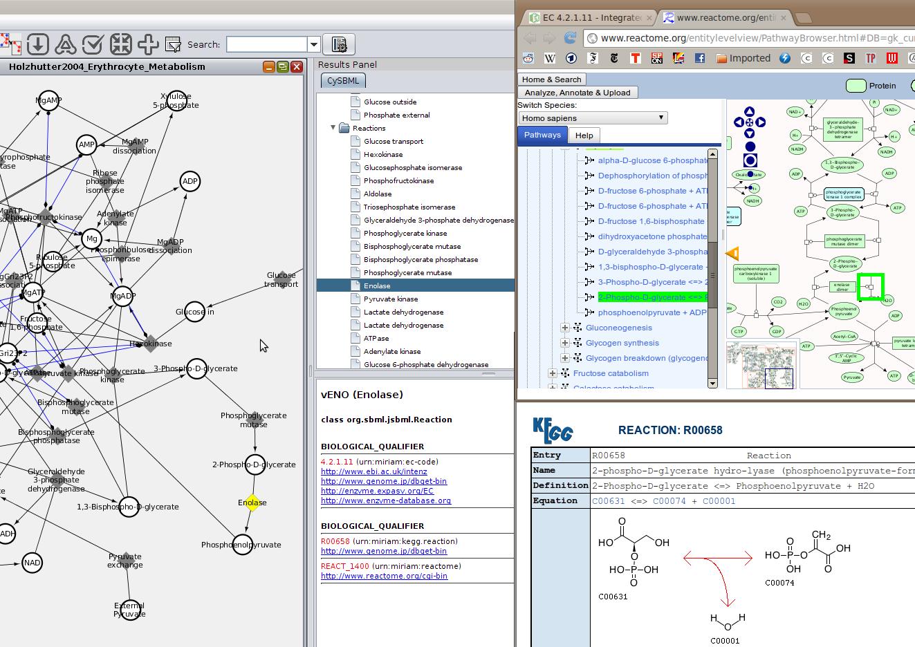 Cytoscape App Store - CySBML