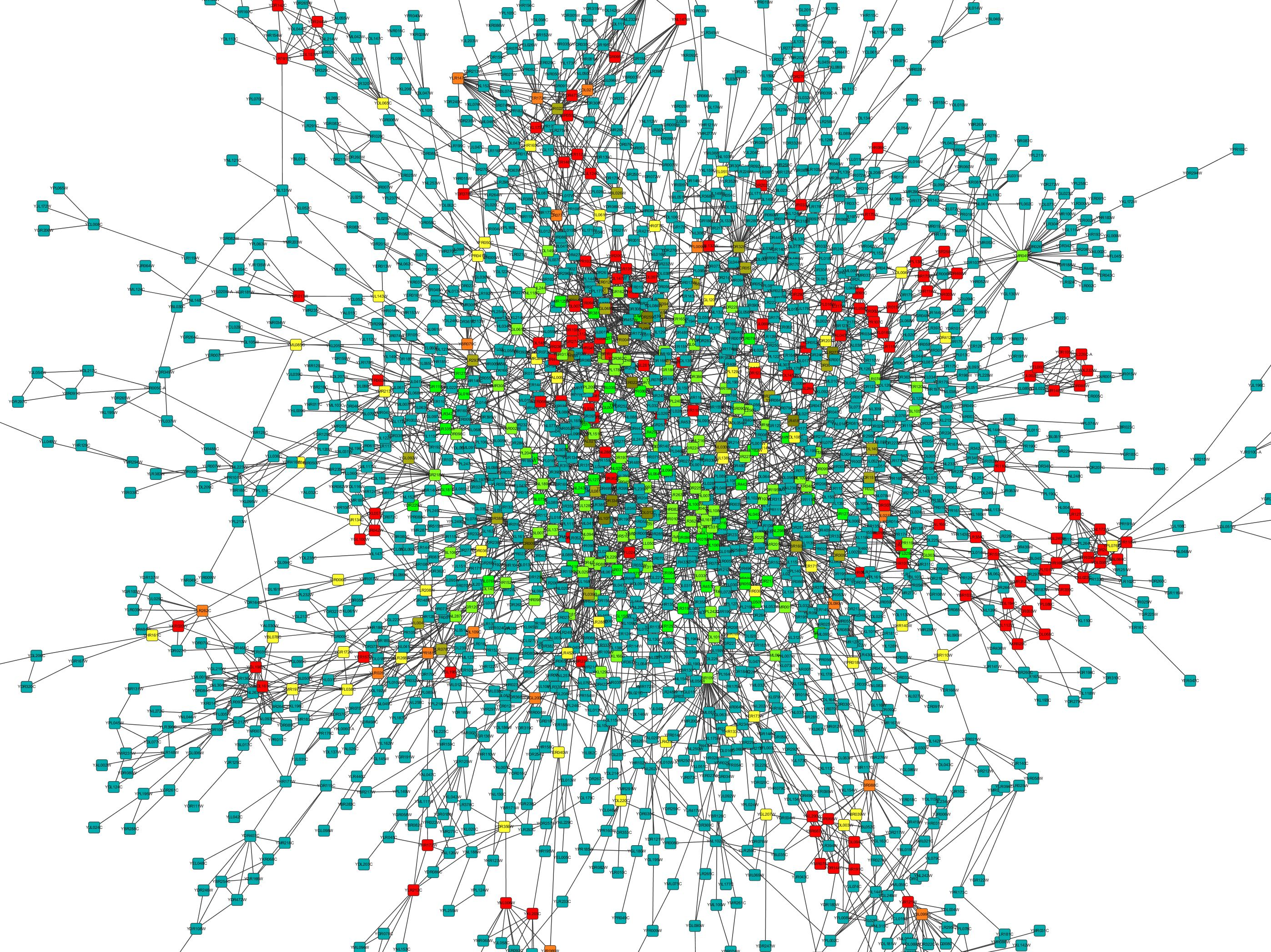 dr tech jon dorbolo apps cytoscape org media cytonca screenshots nc%20bc%20cc%2010%25 jpg