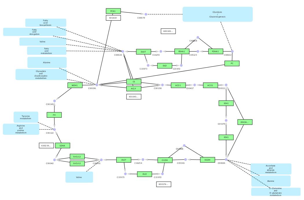 Cytoscape - WiNGS - CyVerse Wiki