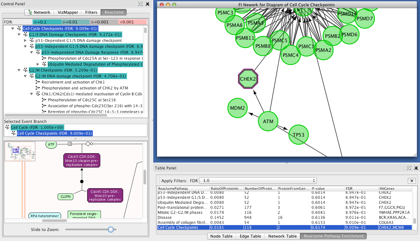CluePedia Cytoscape plugin: pathway insights using ...